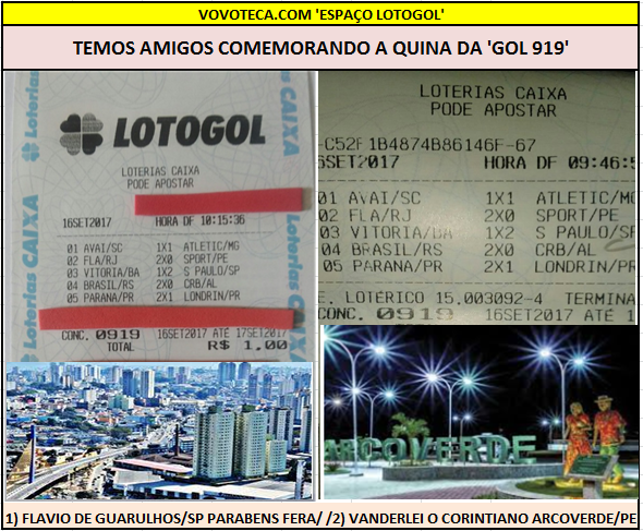 LOTOGOL 919 PREMIOS