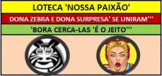 ZEBRA E SURPRESA