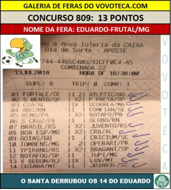 809 13p eduardo