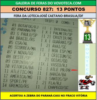 827 13P J CAETANO