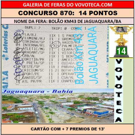 870 14p jaguaquara