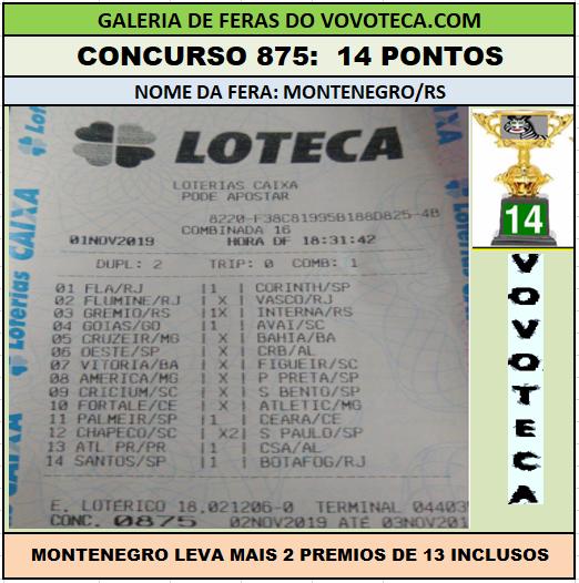 875 14p montenegrors